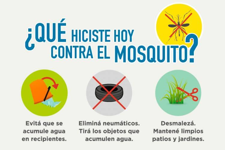 Medidas preventivas para evitar el dengue